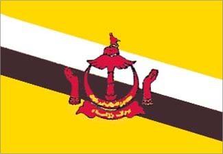 Brunei, Bruneian Flag