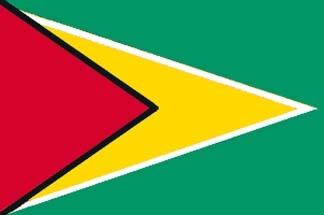 Guyana, Guyanese Flag