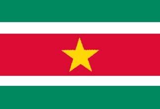 Suriname, Surinamer Flag