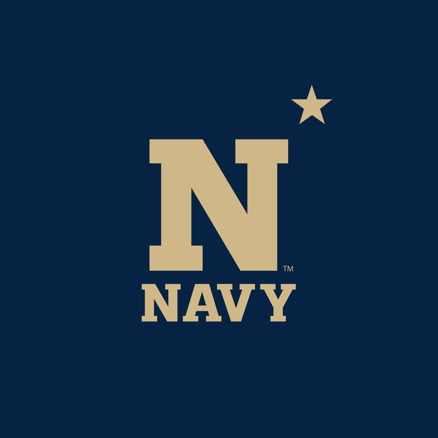 Navy Logo Flag